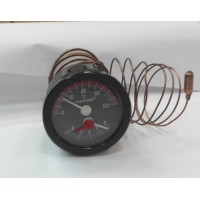 Термометр Protherm.